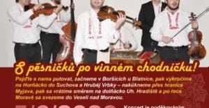 On-line koncert